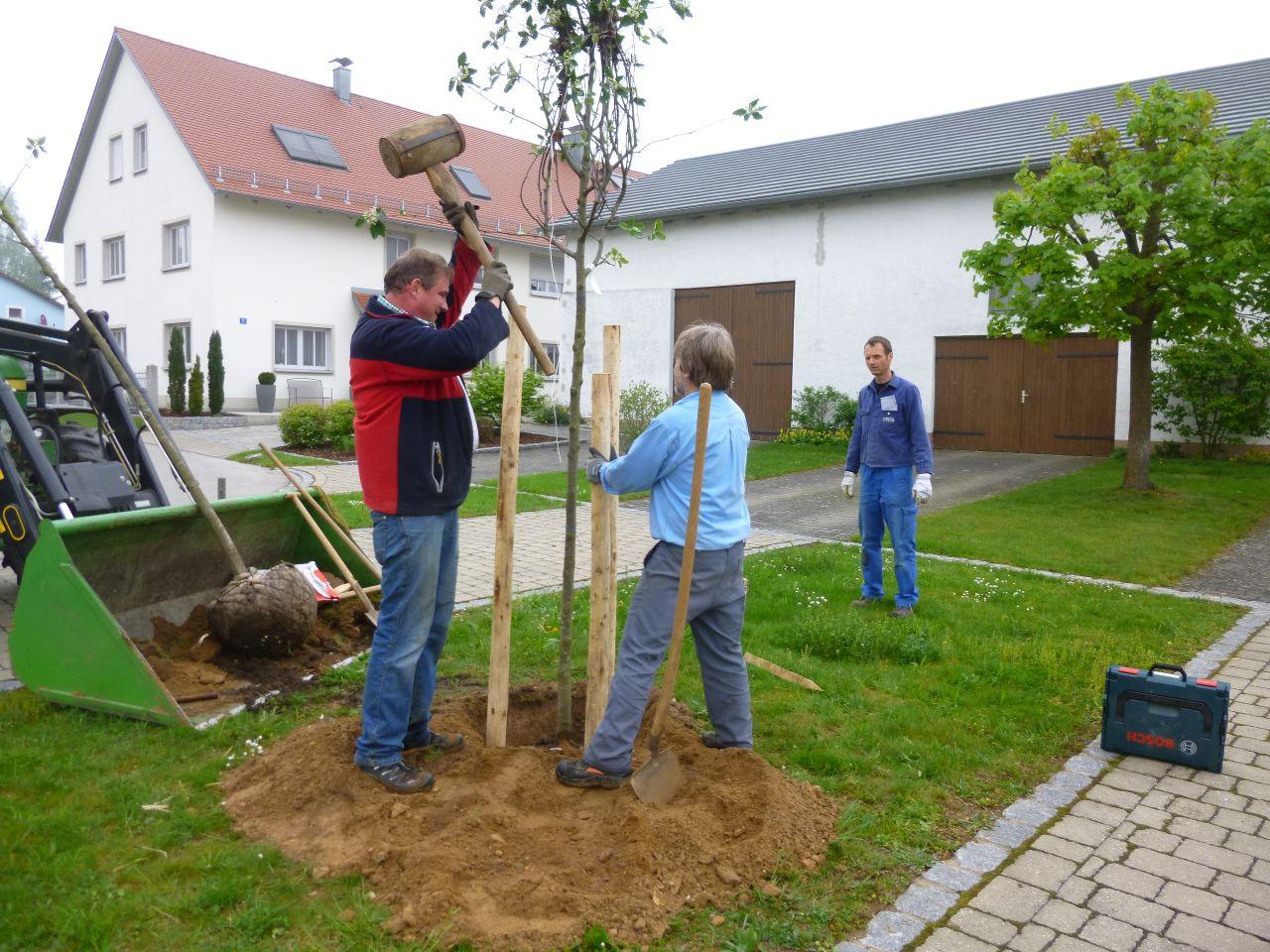 karlsgrabenverein_14
